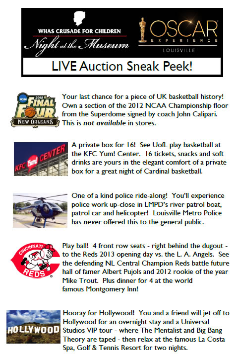 2013 sneak peek live auction
